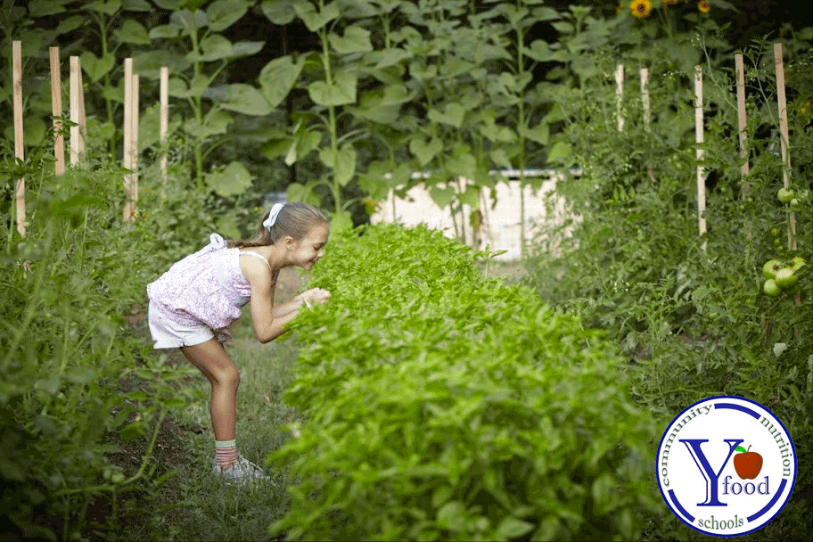 photo of child picking something out of a garden