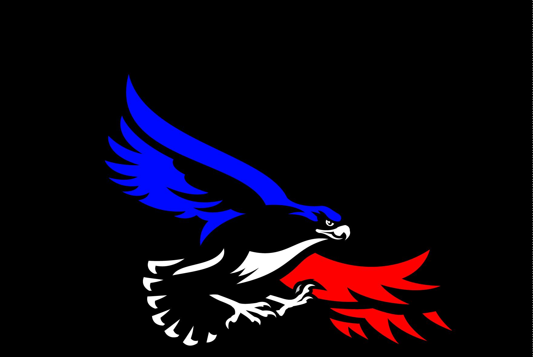 Blackhawks logo