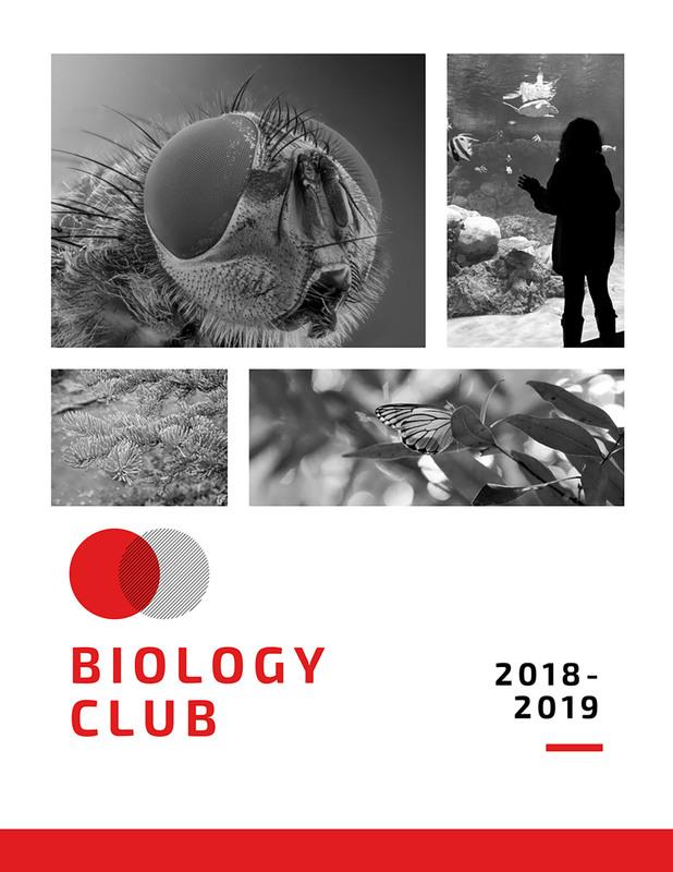biology club 2018-2019 graphic
