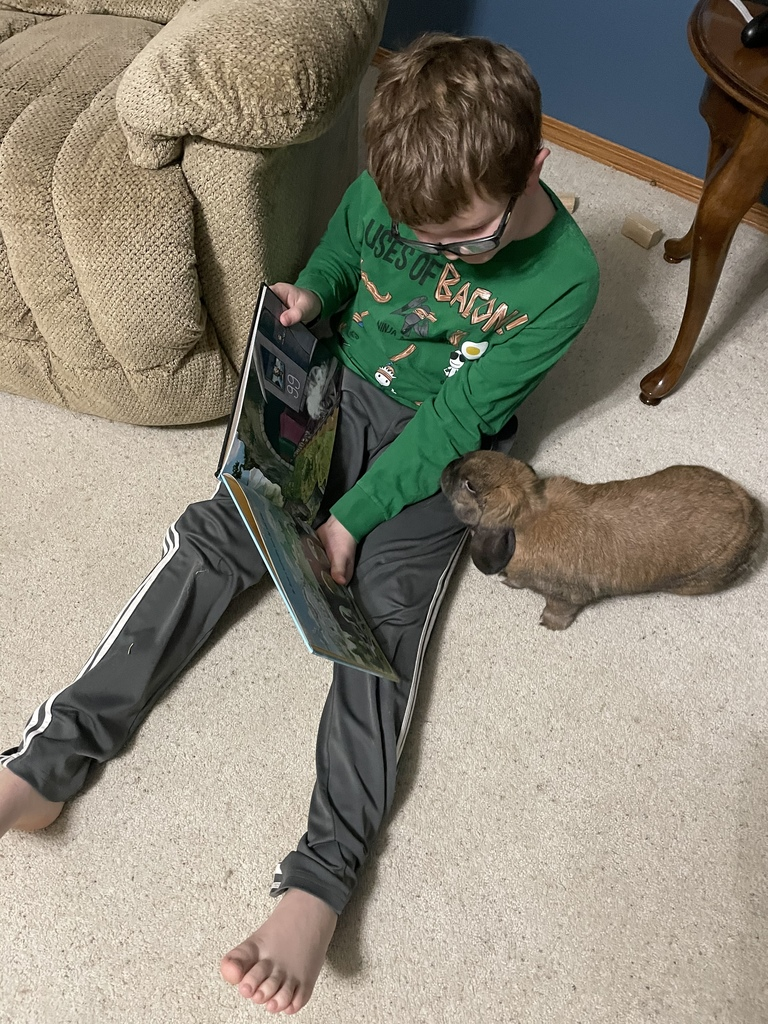 boy student reading to bunny