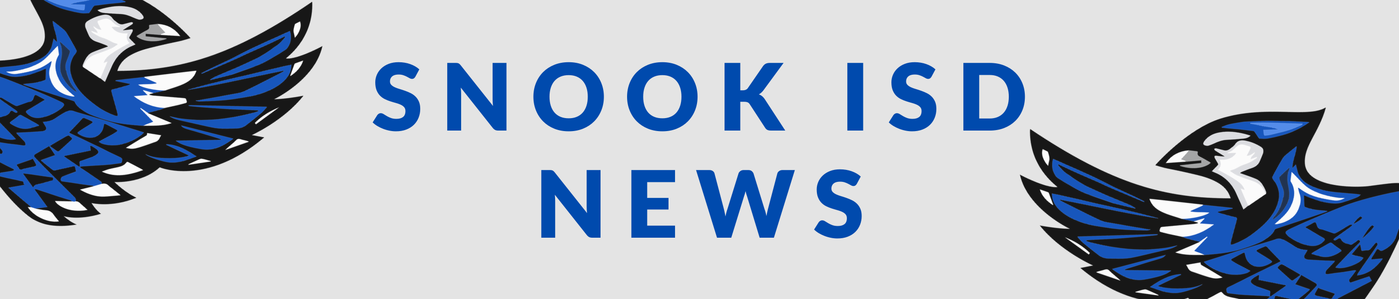 Snook ISD News