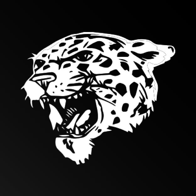 An image of the leopard mascot