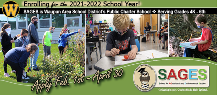 Photo collage of SAGES students observing school rain garden, 3rd grader inspecting tomato, kindergartner writing in journal while sitting on log in School Forest .