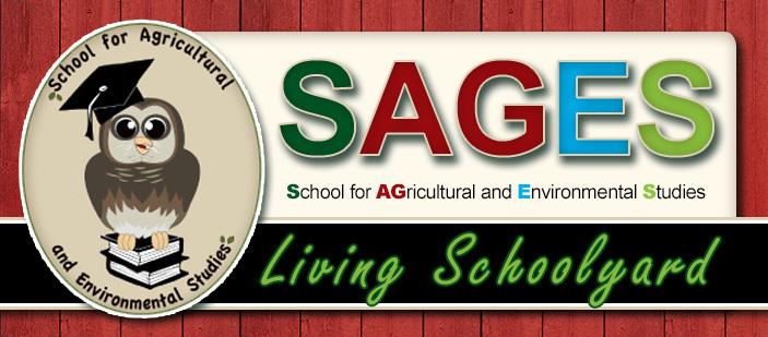 SAGES - LIVING SCHOOLYARD