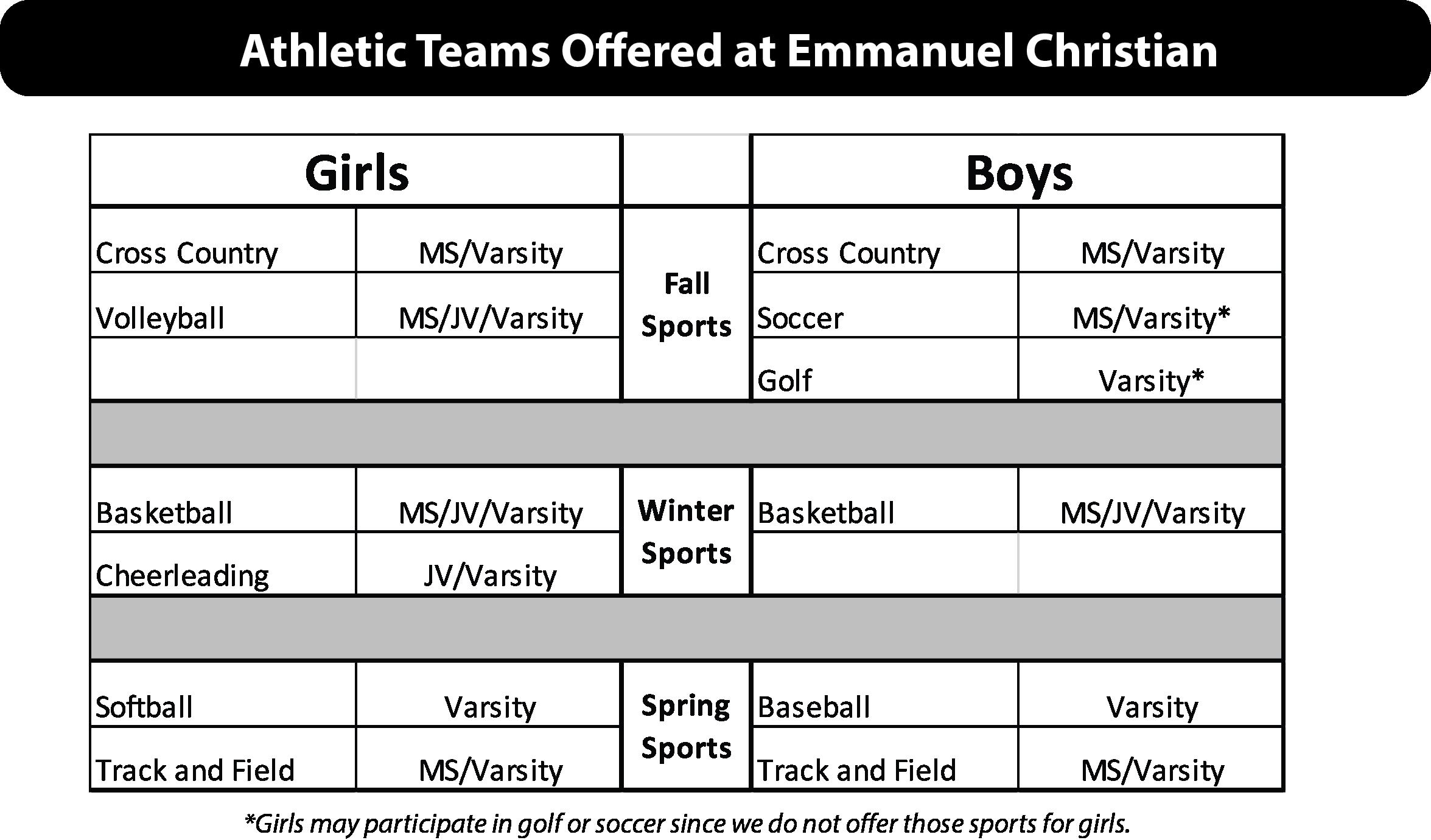 Athletic Teams Offered at Emmanuel Christian.