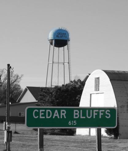 CEDAR BLUFFS 615