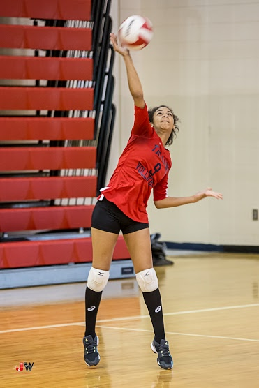 Photo of a volleyball player.