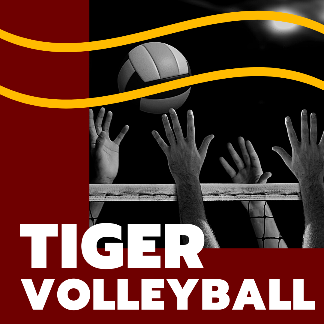 Tiger Volleyball