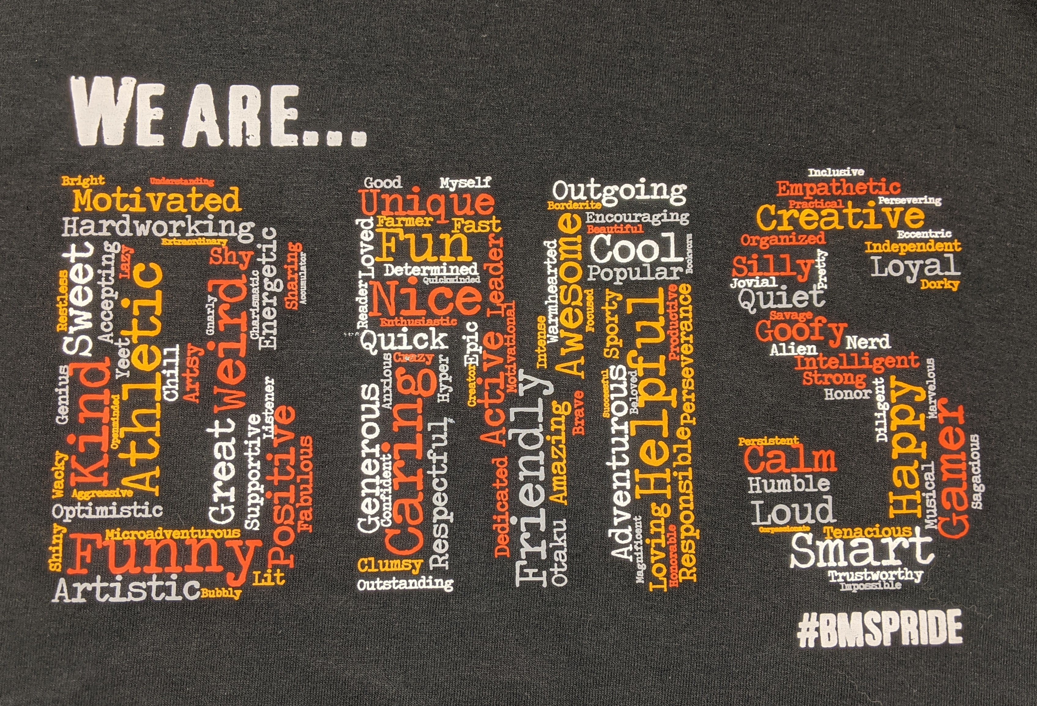 """Image of """"BMS"""" from t-shirt"""
