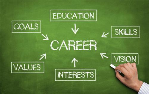Career Path Board