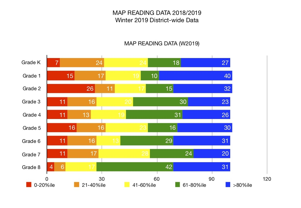MAP reading data 2018/19