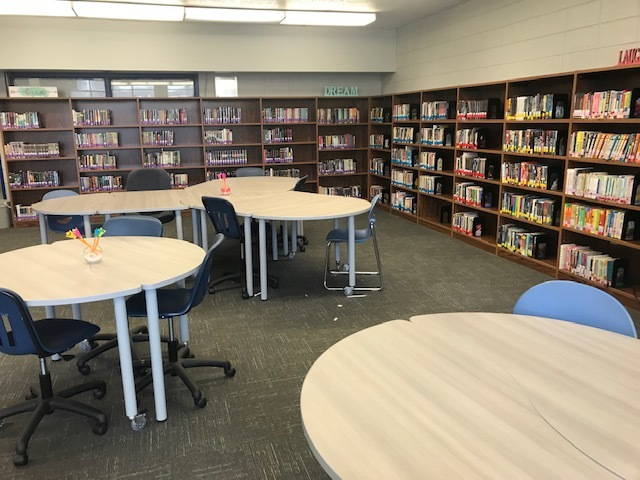 Photo of the renovated NLRMS library
