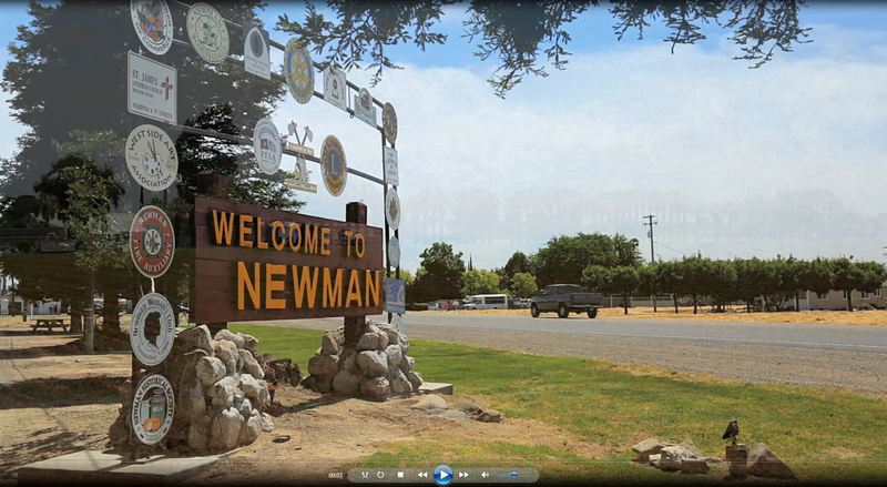 Welcome to Newman