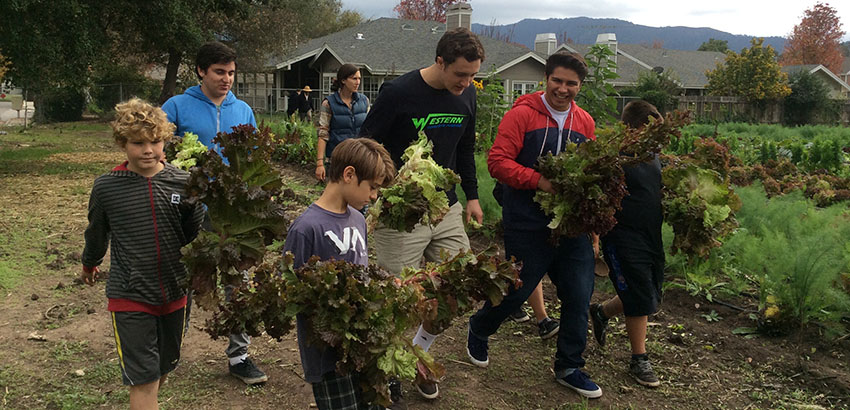 A group of students carrying various plants and trees.