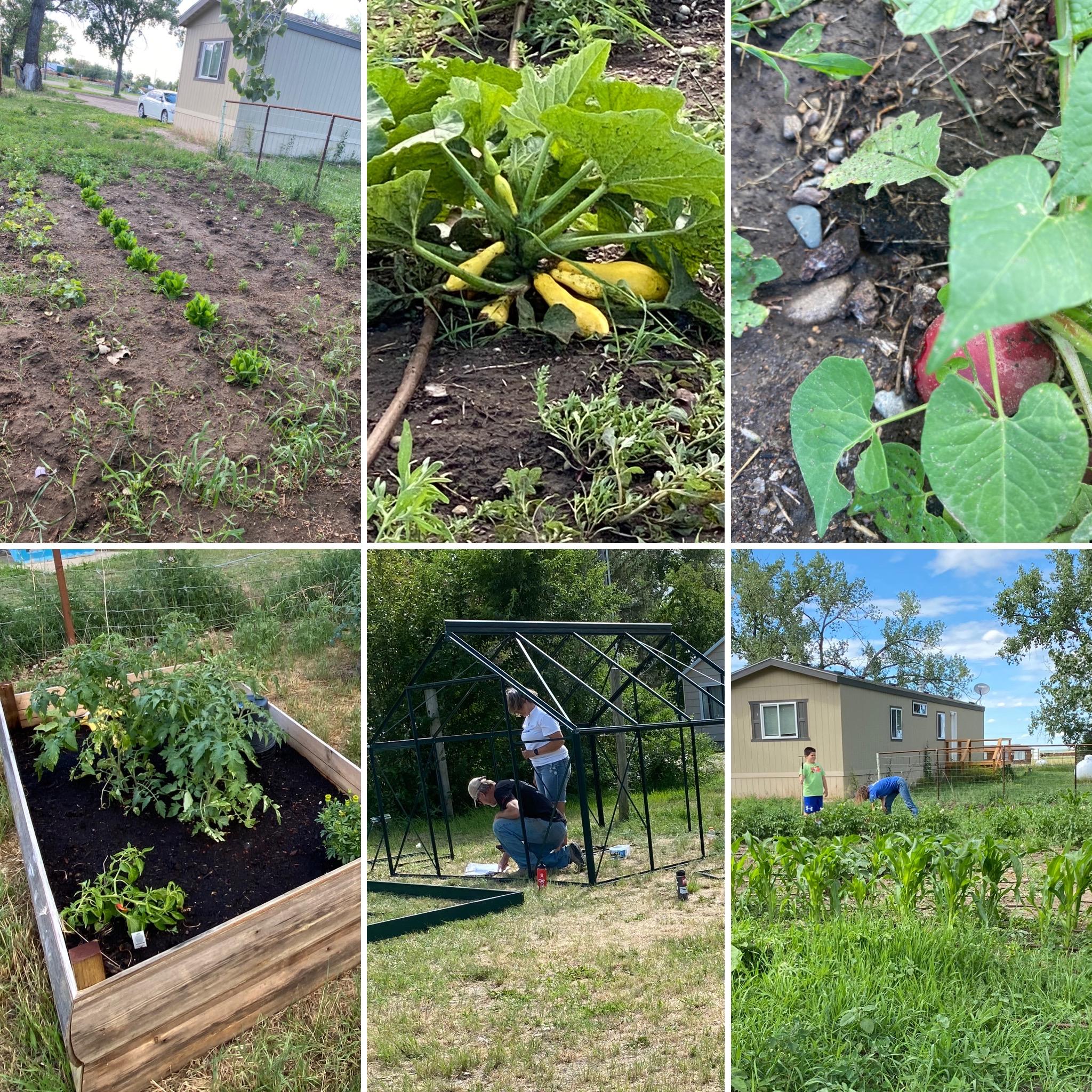Box Elder School Garden