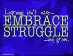Embrace struggle graphic