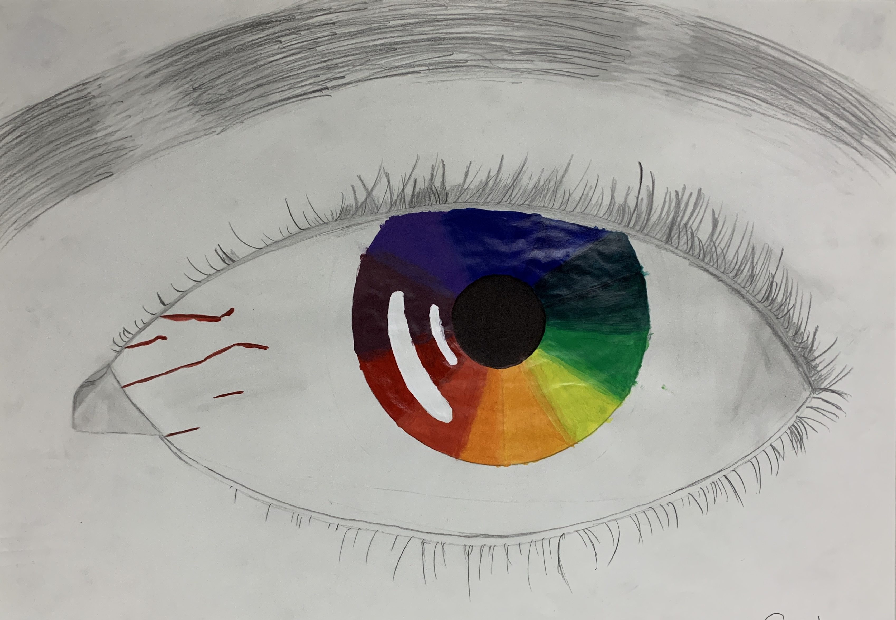 Students color wheel project - eye