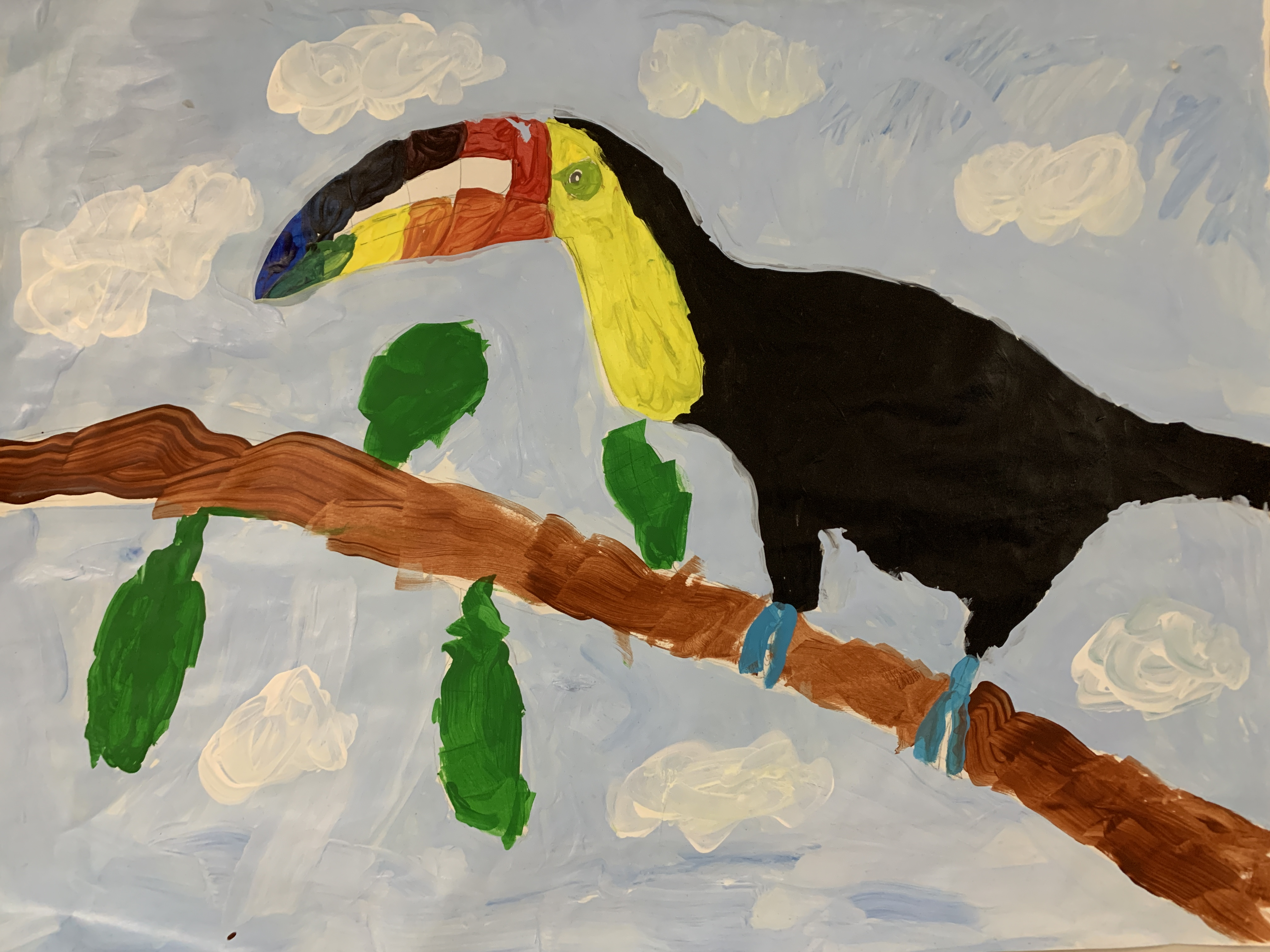 Students color wheel project - a toucan