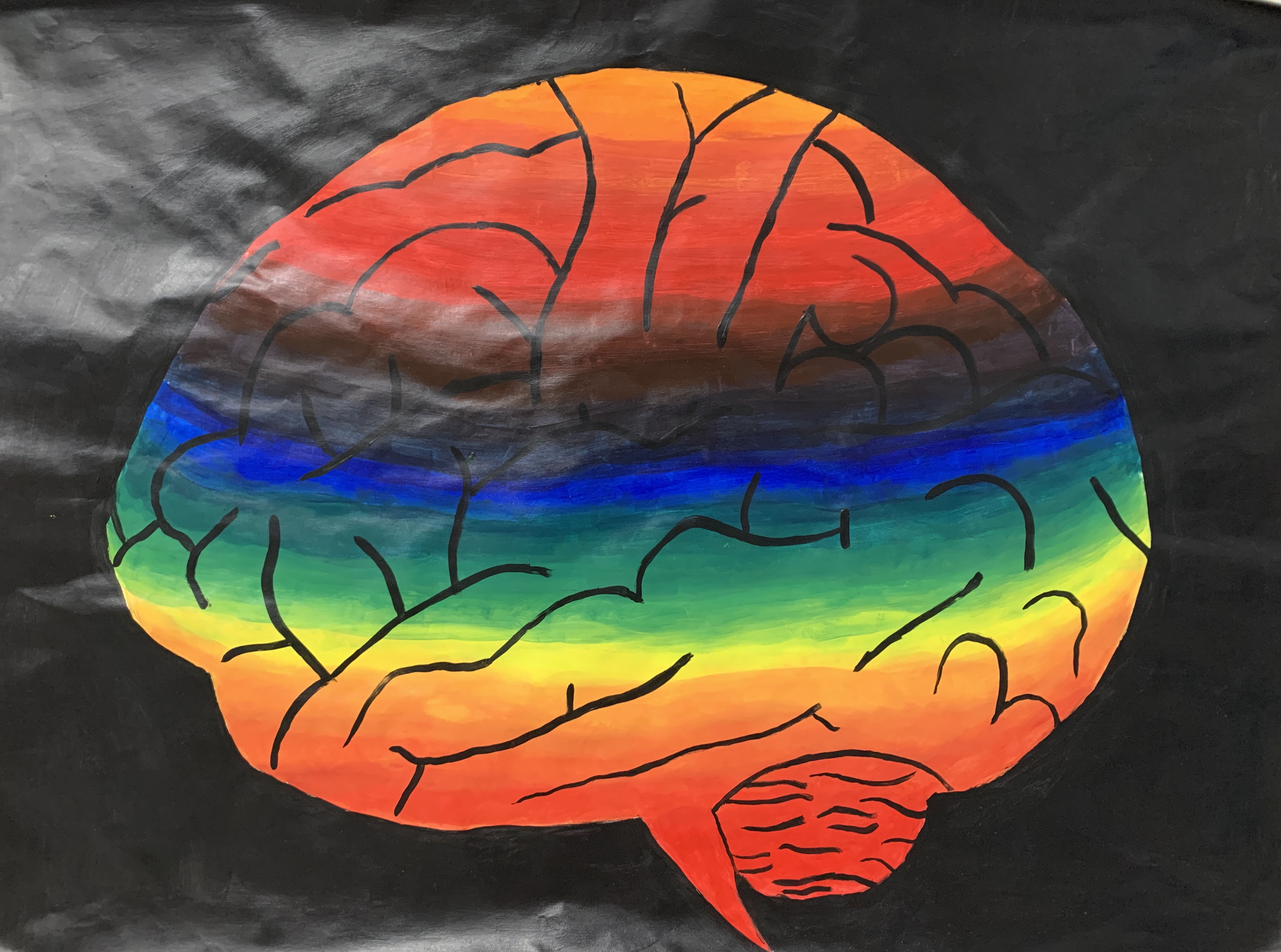 Student's color wheel project - a brain