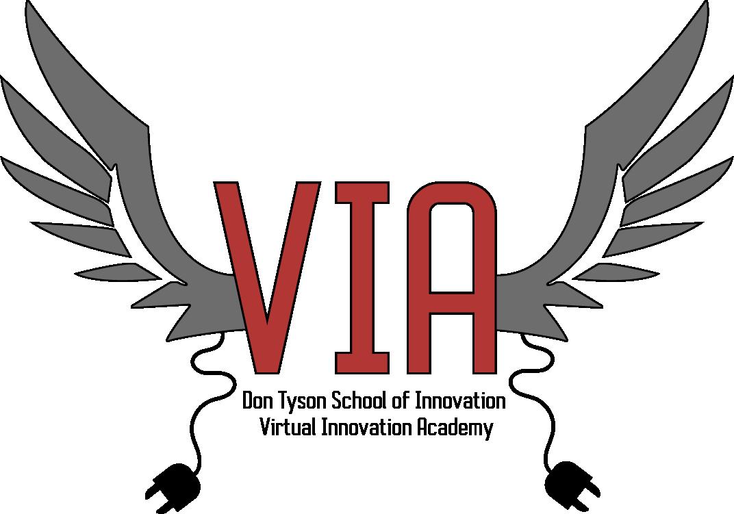 VIA - VIRTUAL INNOVATION ACADEMY LOGO