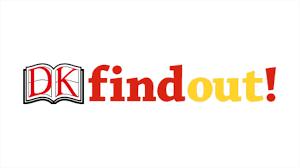 DK Findout!