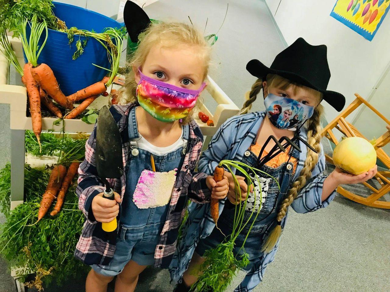 Farmer/Harvest Day