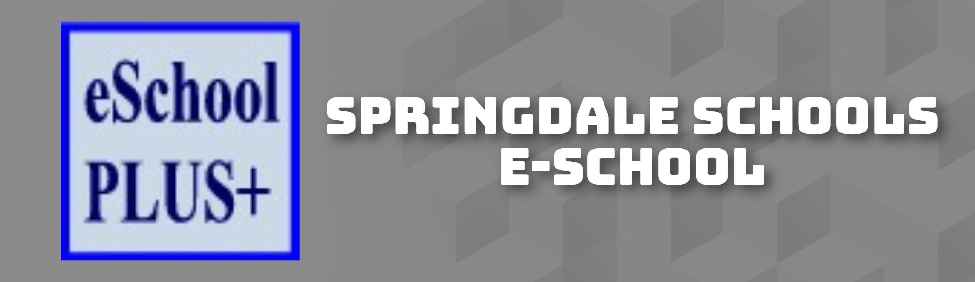 SPRINGDALE SCHOOLS E-SCHOOL