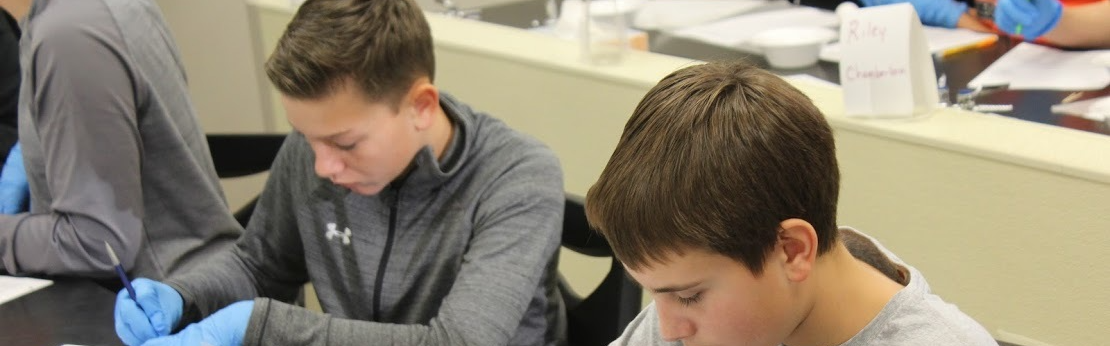 Students Working in a Science Classroom