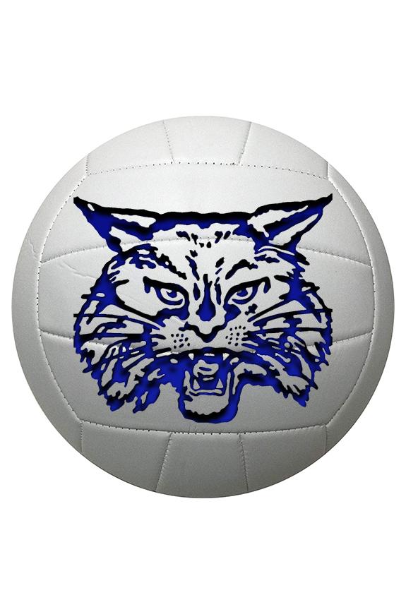 Childress ISD Volleyball