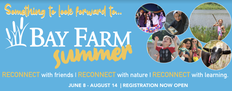 Bay Farm Summer information.