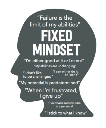Growth Mindset: Focused on Opportunities for Learning
