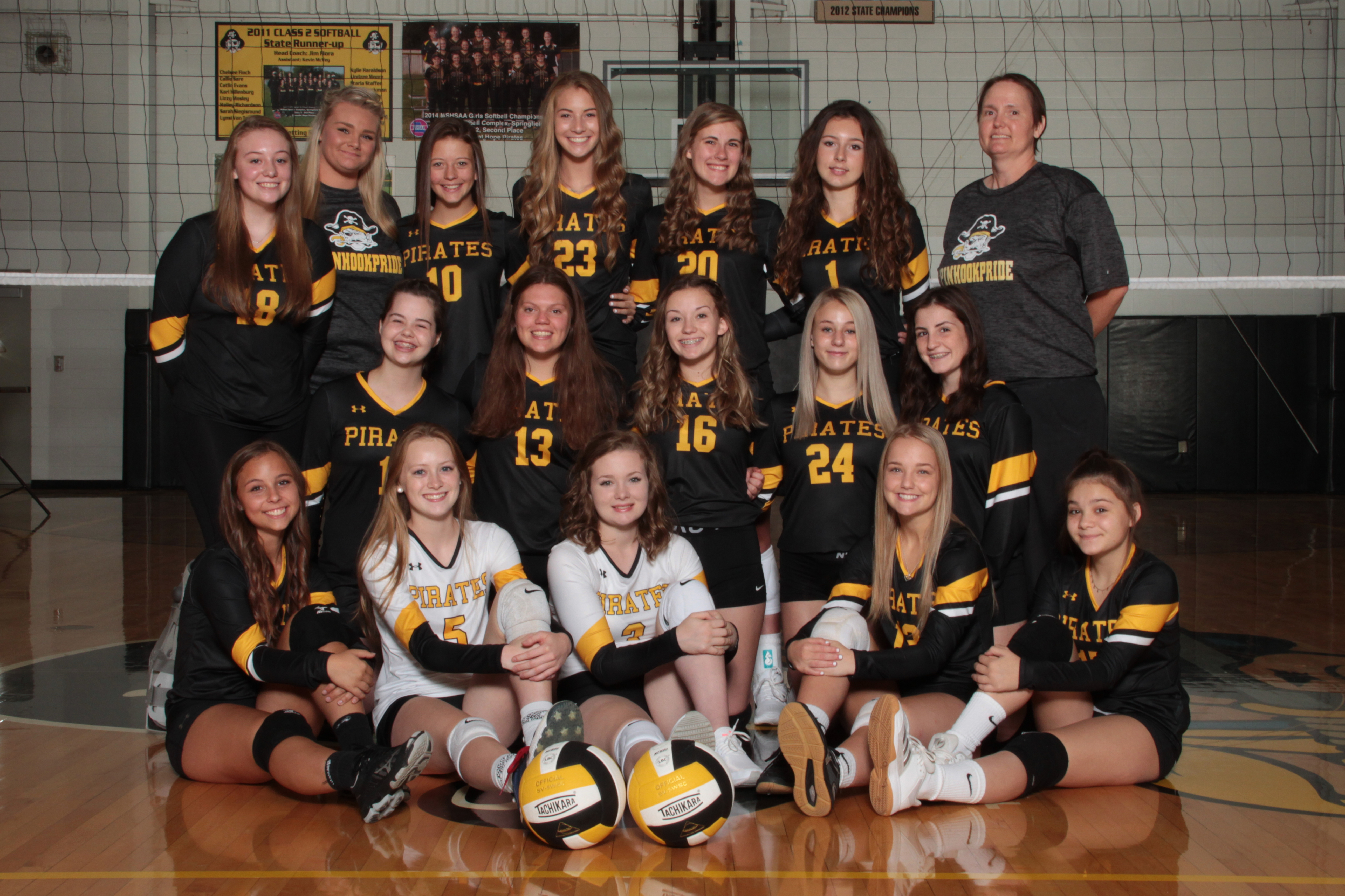 HS Volleyball Picture