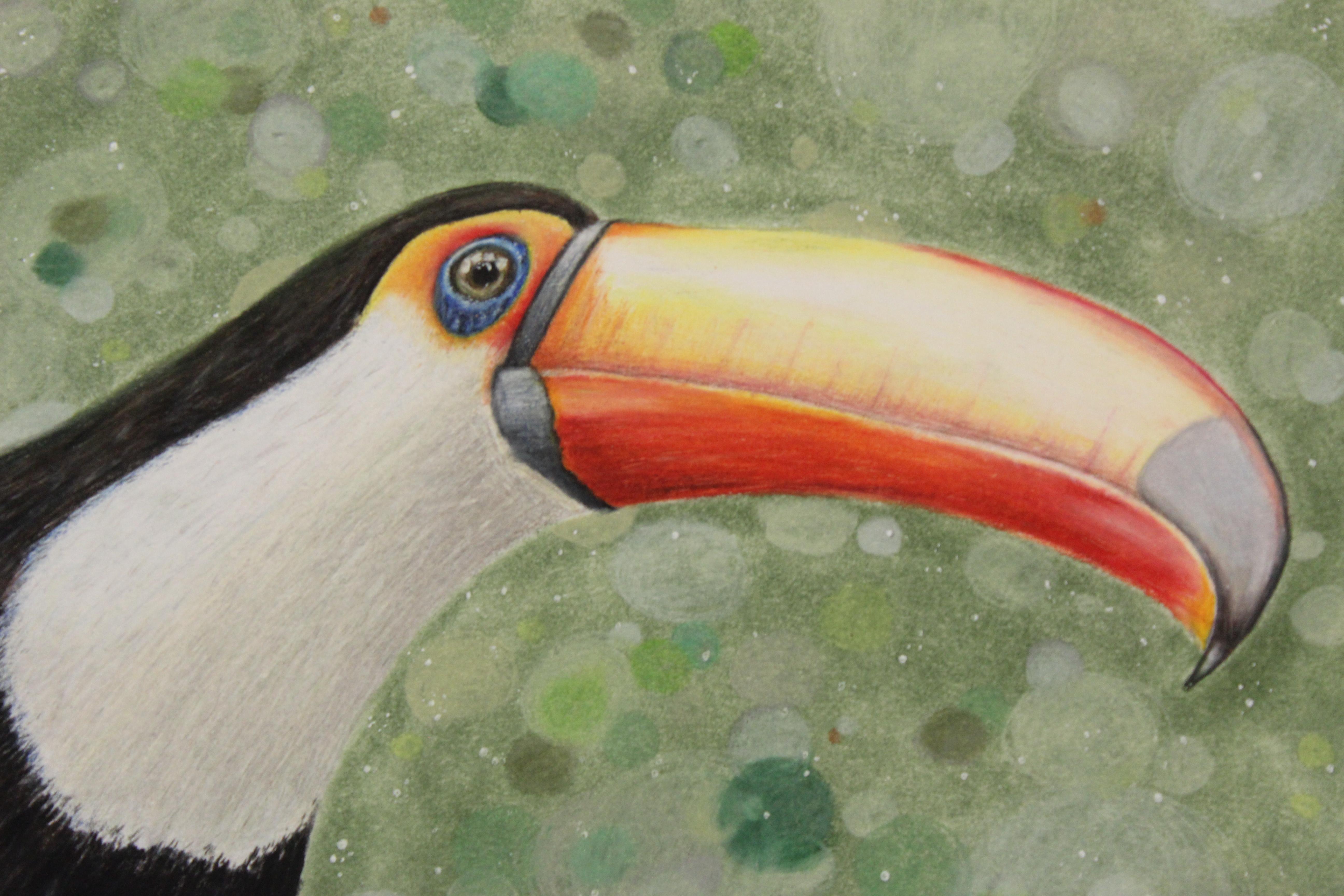 Color pencil art by Hannah Evans