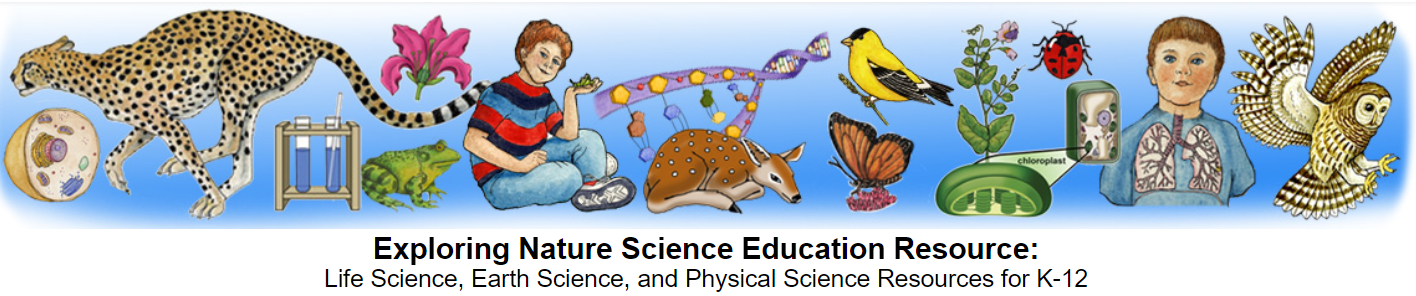 Exploring Nature Science Education Resource: Life Science, Earth Science, and Physical Science Resources for K-12
