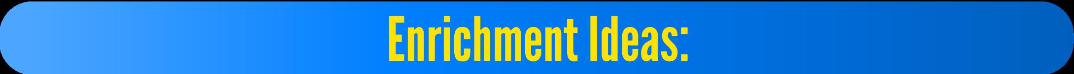Enrichment Ideas: