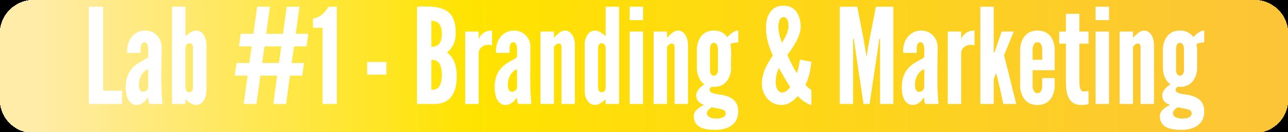 Lab #1 - Branding & Marketing