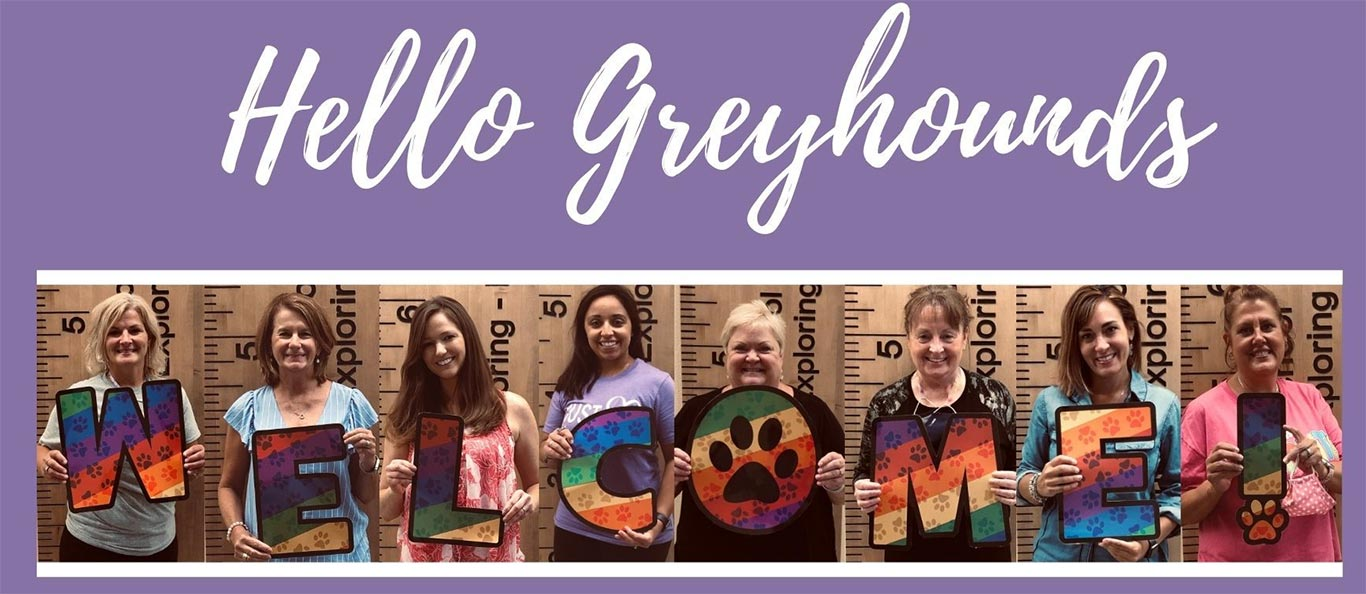 Welcome Greyhounds!