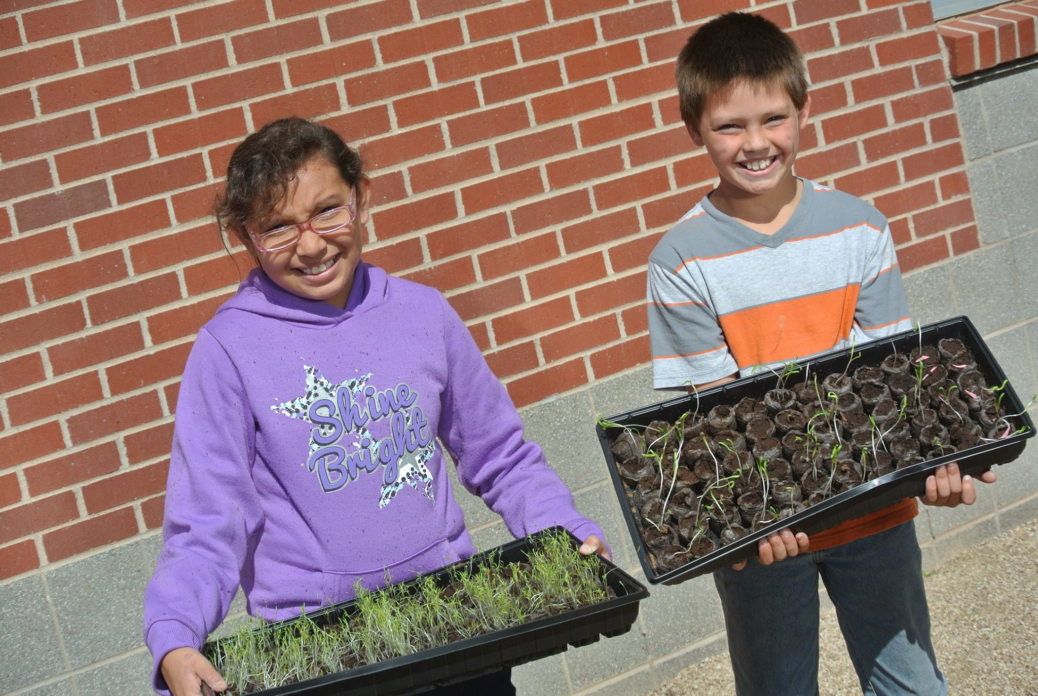 Students holding seedlings