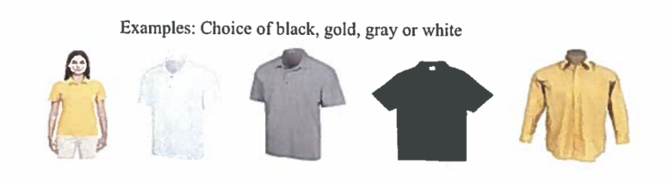 Examples of Shirts
