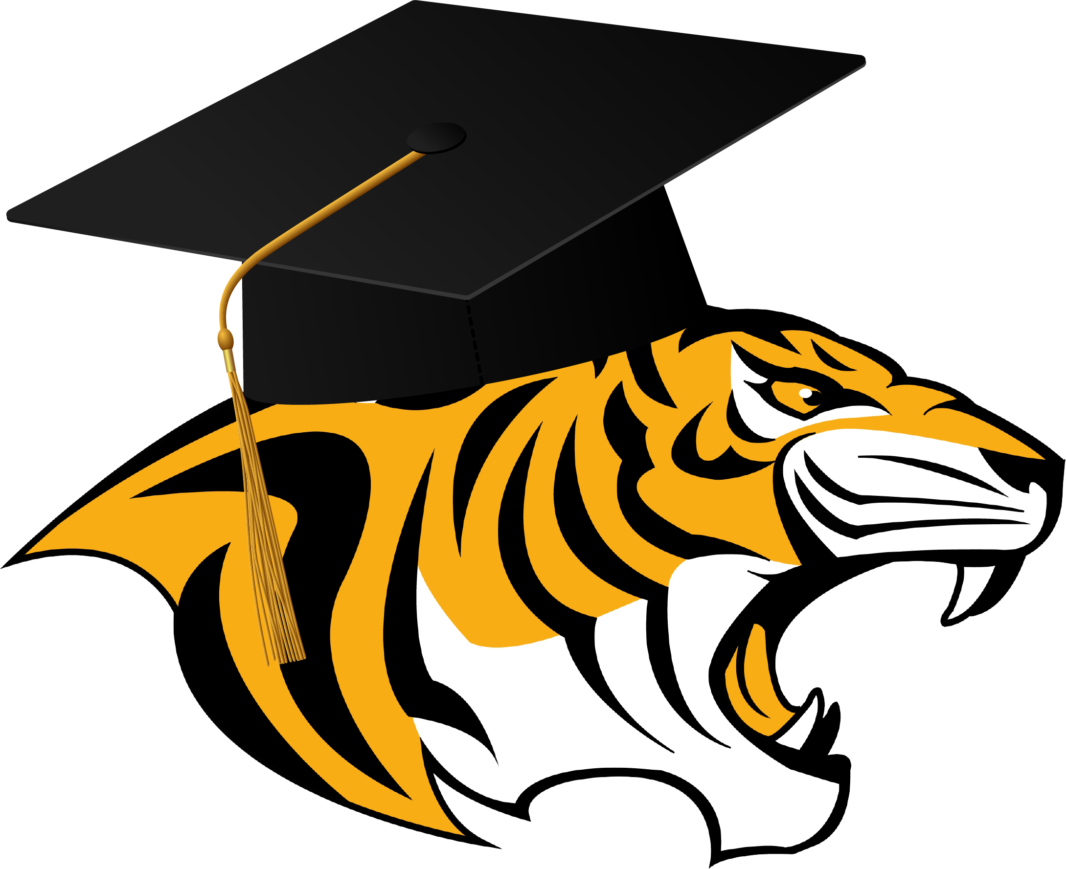 Tiger with cap