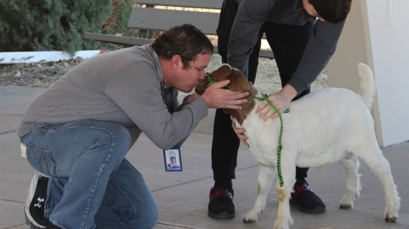 FFA Kiss the Goat