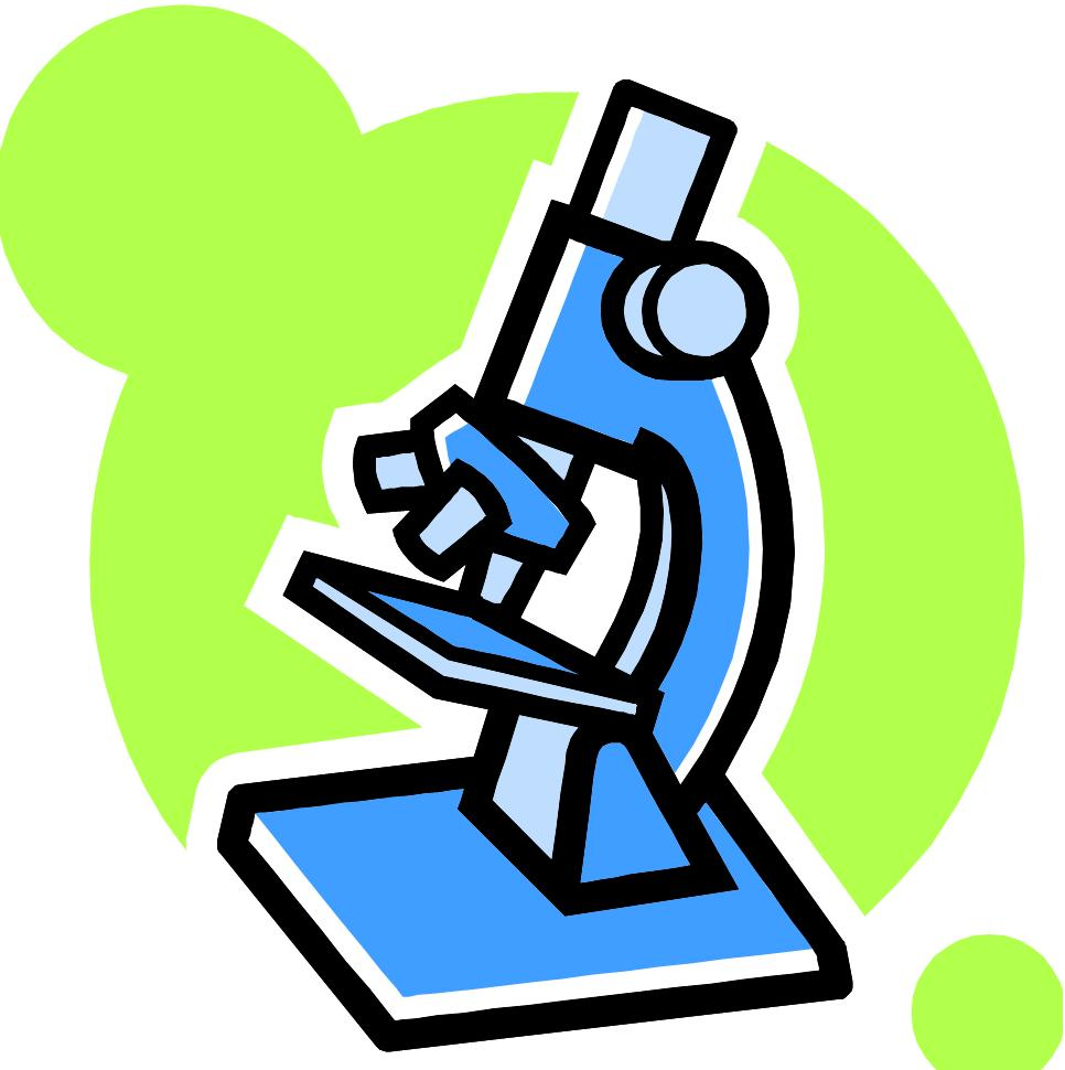 A drawing of a compound microscope