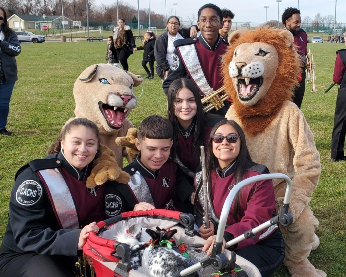 Band with school mascot