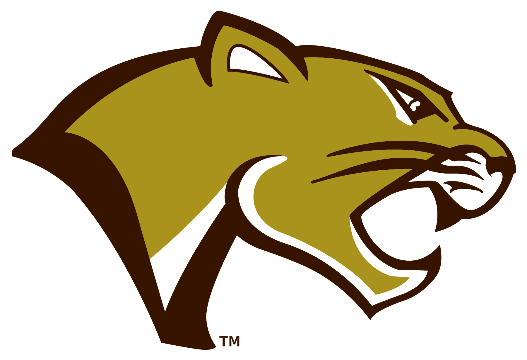 Photo of Highland's Trademarked Cougar Head Logo