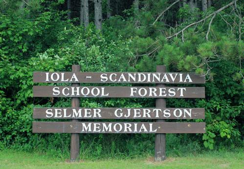 HIGHWAY 49 SCHOOL FOREST PROPERTY