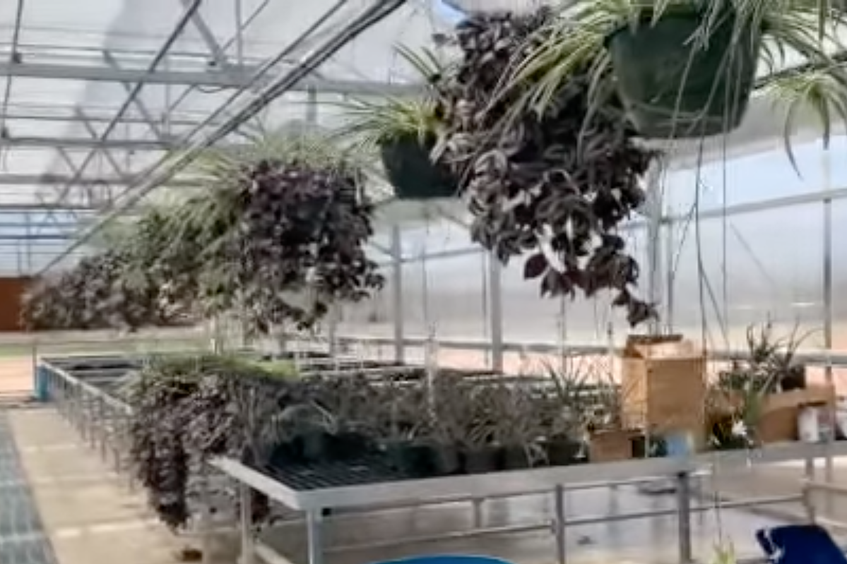 Paragould Ag Greenhouse