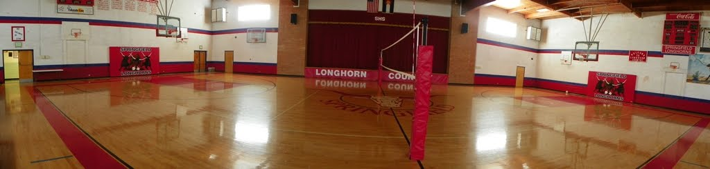 volleyball gym photo
