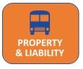 Property & Liability