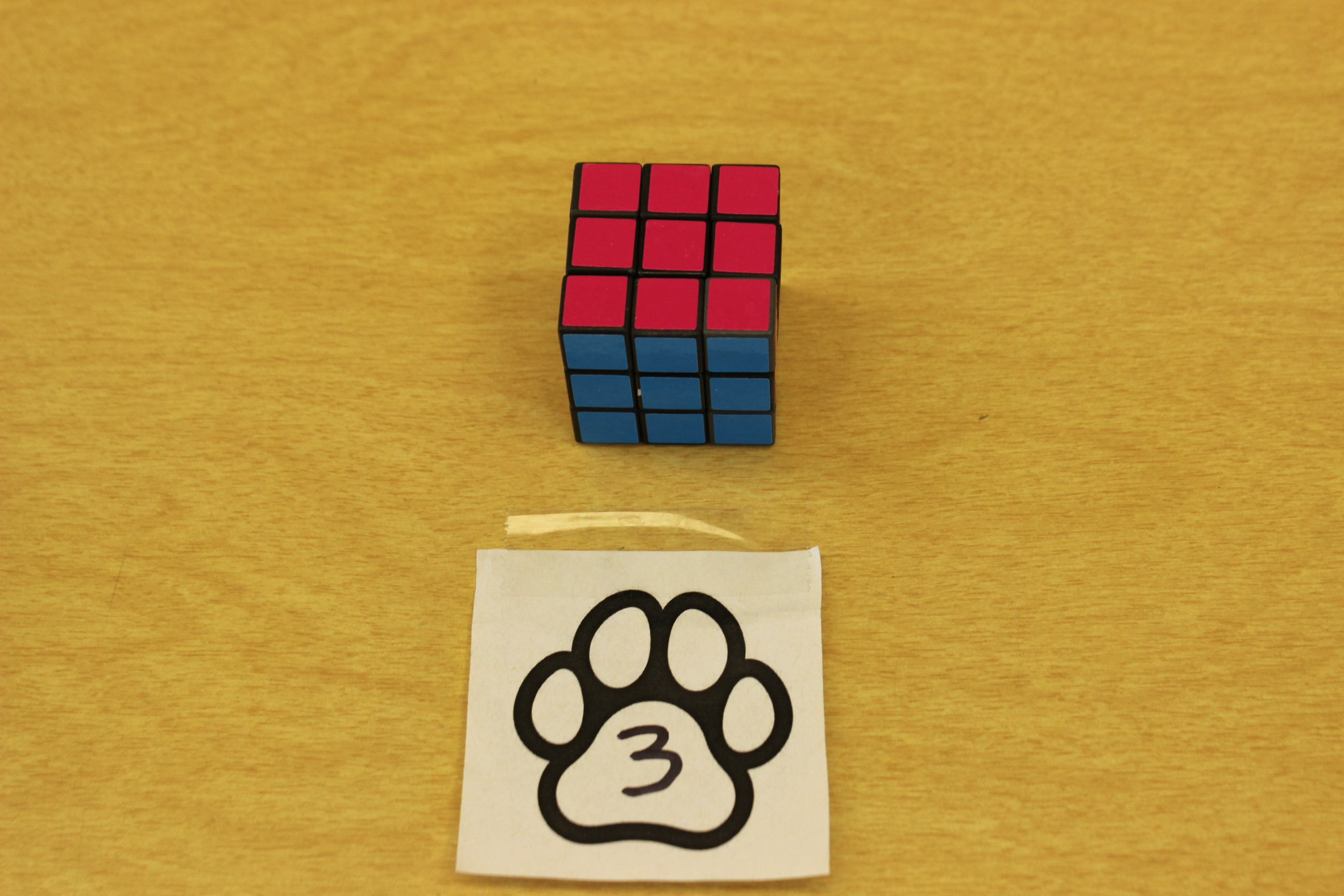 3 Paws Puzzle Cube