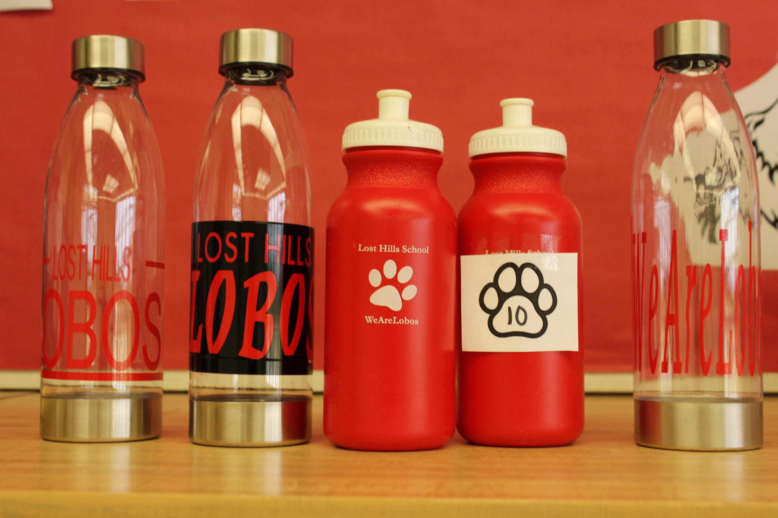 10 Paws Lobo Clear Water Bottle